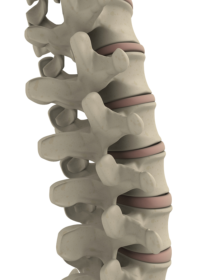 chiropractic_image_of_spine