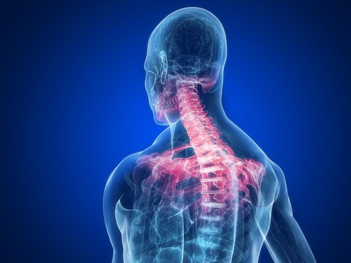 shoulder and neck pain relief knoxville auto accident chiropractor